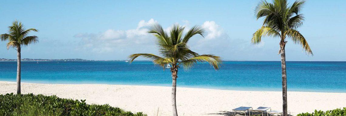 Image d'une plage avec vue sur la mer et les palmiers