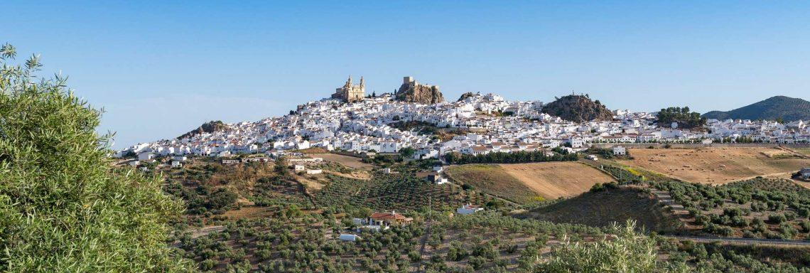 Club Med Magna Marbella - Les attraits locaux