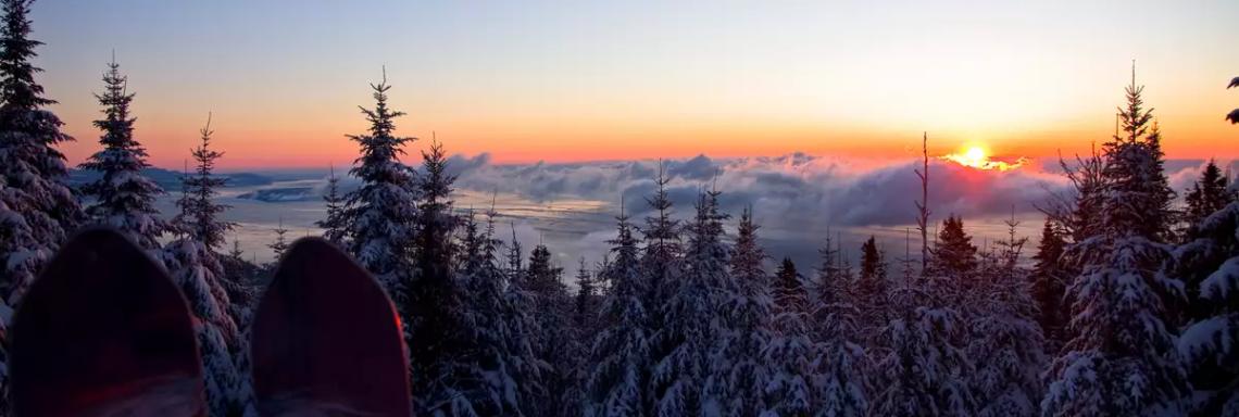 Photo d'un coucher de soleil sur la forêt enneigée